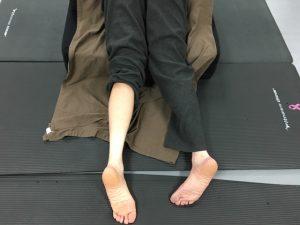 June 2020: 5th Annual Karmuka Yoga Workshop Series Integrated Techniques - Karmuka Yoga