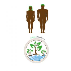 Ayurveda y Los Tres Doshas: La Medicina Natural y La Autocompasión - Karmuka Yoga