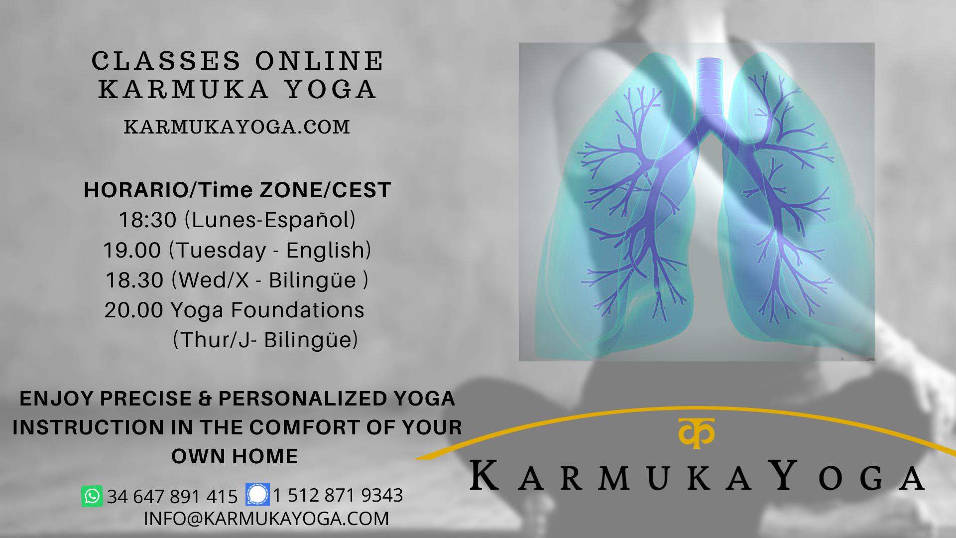 Karmuka Yoga online yoga classes. Iyengar. Yamuna Body Rolling Yoga Therapy