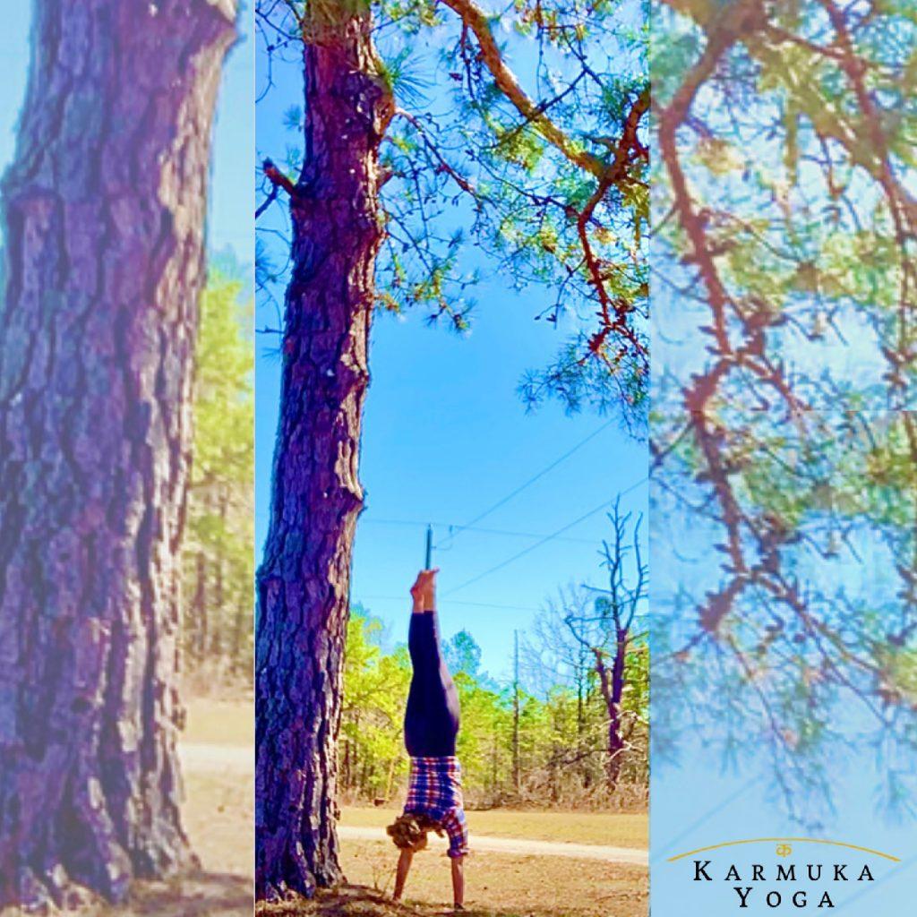 Árbol de Eden : Karmuka Yoga Poema de Unidad - Karmuka Yoga