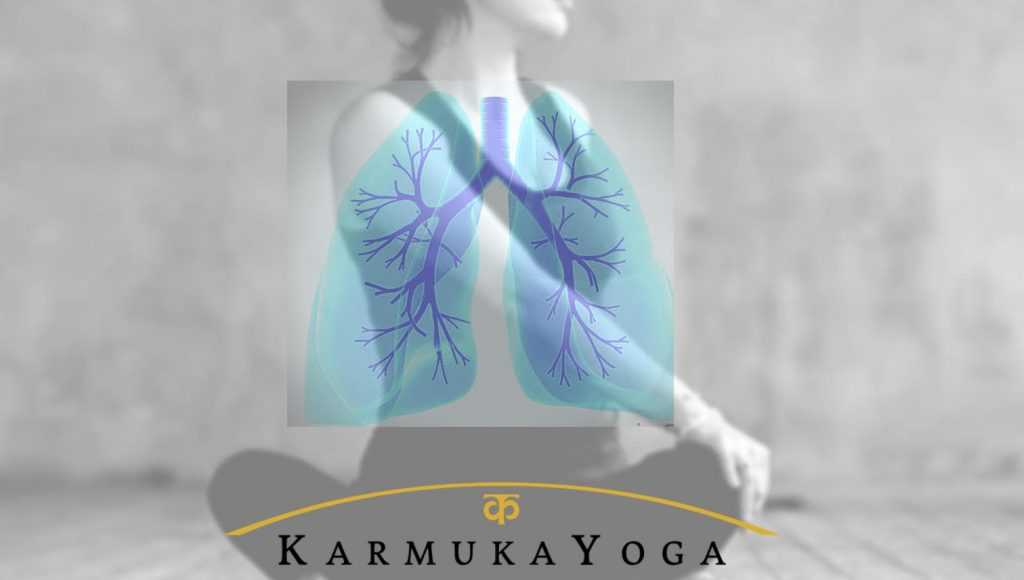 Classes and courses - Karmuka Yoga