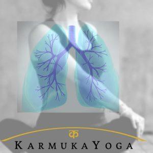 Karmuka Yoga therapy online. Yoga retreats. Online Yoga classes.