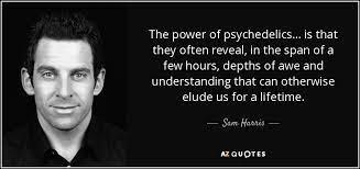 Psychedelics, Yoga and the Shamanic Journey Part I - Karmuka Yoga