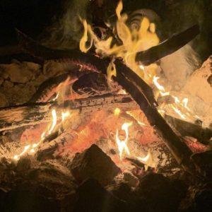 Psychedelics, Yoga and the Shamanic Journey Part III : Mexico - Karmuka Yoga